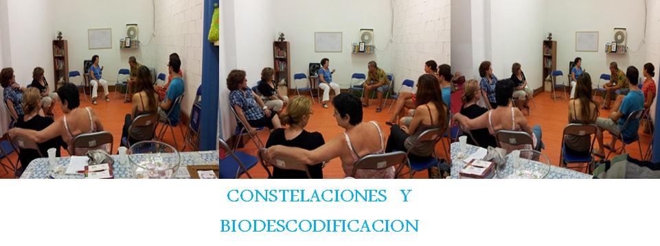 COSTELACIONES BIODESCODIFICACION