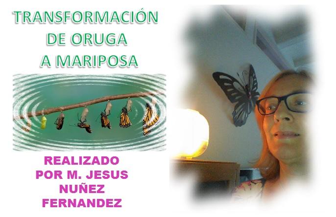 AUDIO TALLER TRANSFORMACIÓN DE ORUGA A MARIPOSA – 1 PARTE